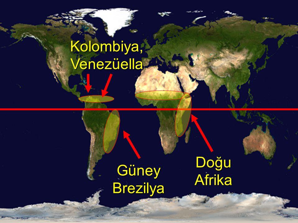  10°-20°Kuzey- 10°-20°Güney arasındadır. Güney Brezilya, Kolombiya, Venezüella, Doğu Afrika.