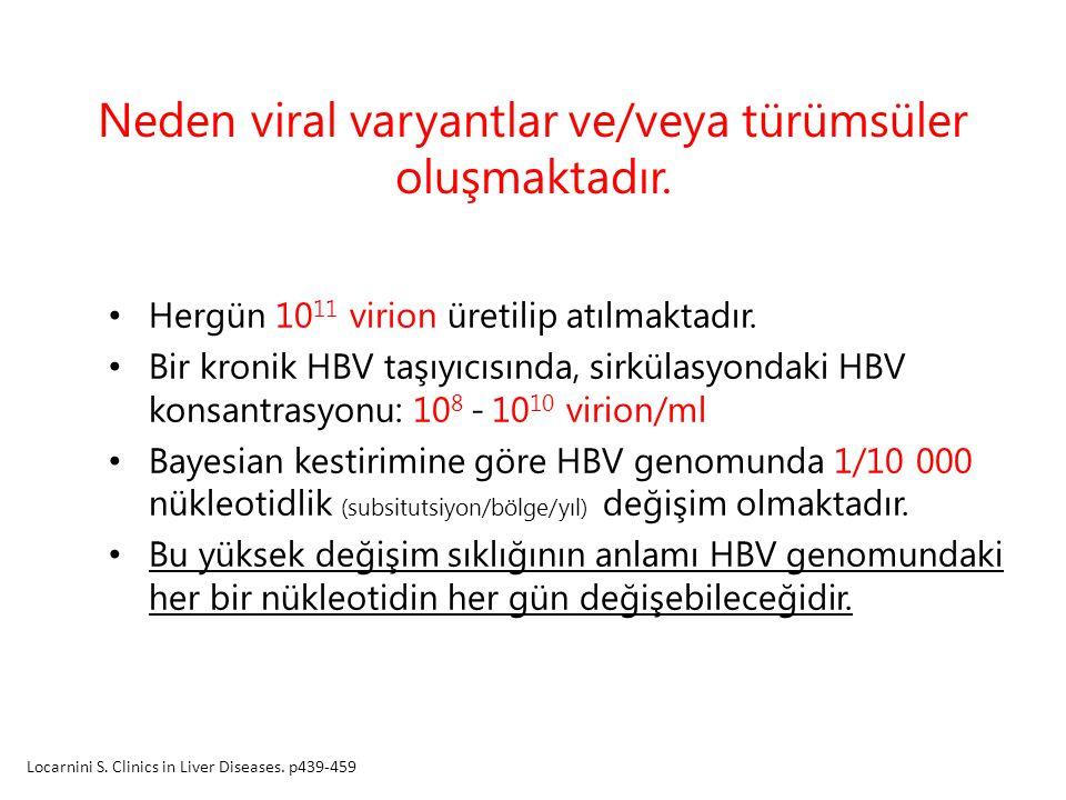 Neden viral varyantlar ve/veya türümsüler oluşmaktadır. Hergün 10 11 virion üretilip atılmaktadır. Bir kronik HBV taşıyıcısında, sirkülasyondaki HBV k