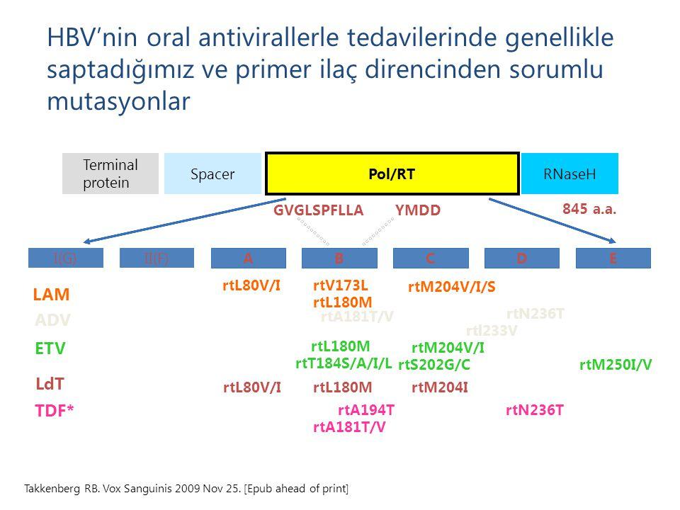 845 a.a. Terminal protein Spacer Pol/RT RNaseH ABCED YMDDGVGLSPFLLA I(G)II(F) rtL80V/I rtM204V/I/S LAM rtV173L rtL180M rtA181T/V rtN236T rtl233V ADV r