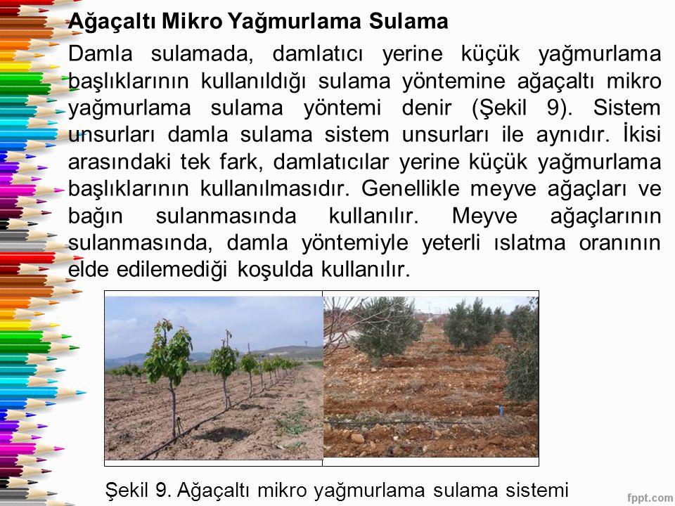 Ağaçaltı Mikro Yağmurlama Sulama Damla sulamada, damlatıcı yerine küçük yağmurlama başlıklarının kullanıldığı sulama yöntemine ağaçaltı mikro yağmurlama sulama yöntemi denir (Şekil 9).
