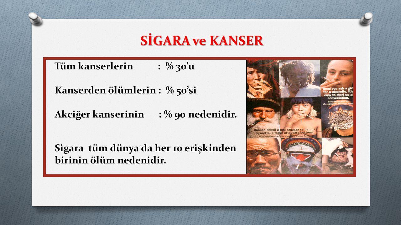 SİGARA ve KANSER Tüm kanserlerin : % 30'u Kanserden ölümlerin : % 50'si Akciğer kanserinin : % 90 nedenidir. Sigara tüm dünya da her 10 erişkinden bir