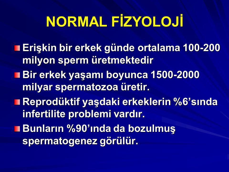 NORMAL FİZYOLOJİ Erişkin bir erkek günde ortalama 100-200 milyon sperm üretmektedir Bir erkek yaşamı boyunca 1500-2000 milyar spermatozoa üretir. Repr