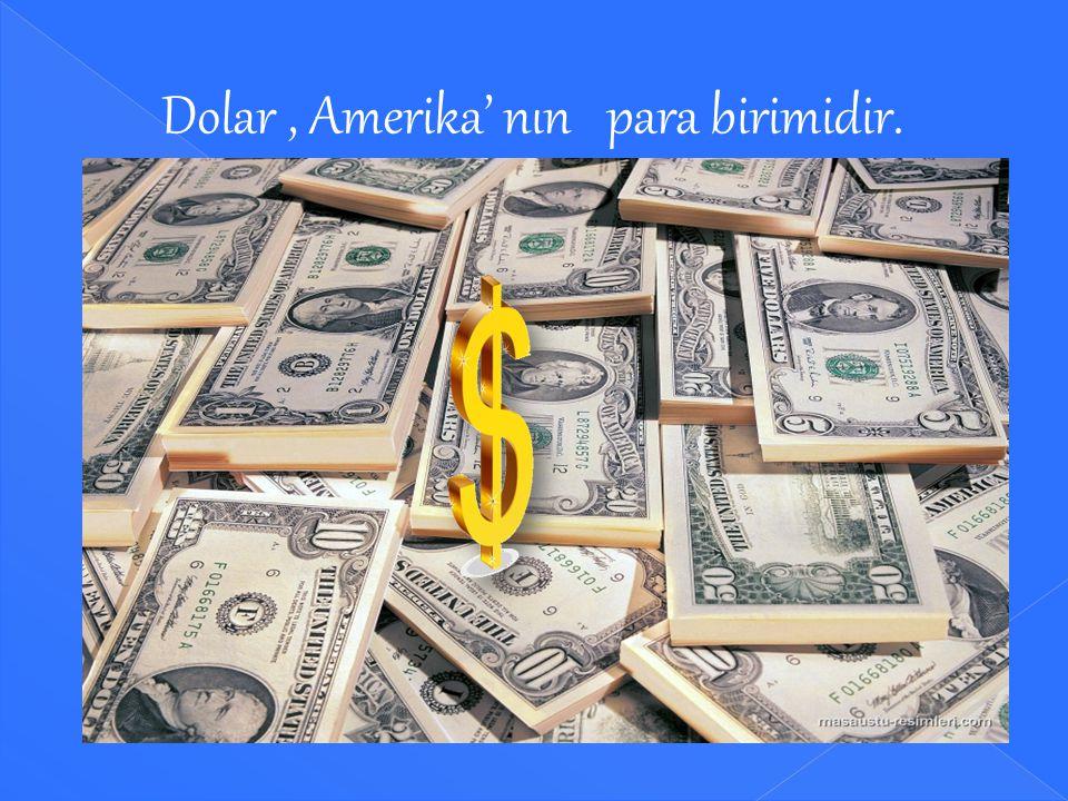 Her ülkenin bir para birimi ve logosu vardır. Nijerya: Nairası Hindistan: Rupi Meksika: Peso Rusya: Ruble Çin : Yuan Kuzey Kore : Won