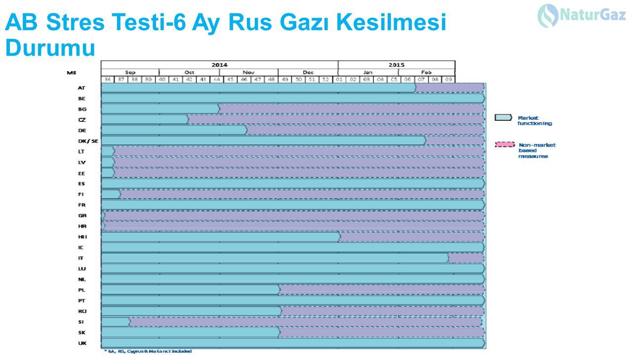 AB Stres Testi-6 Ay Rus Gazı Kesilmesi Durumu