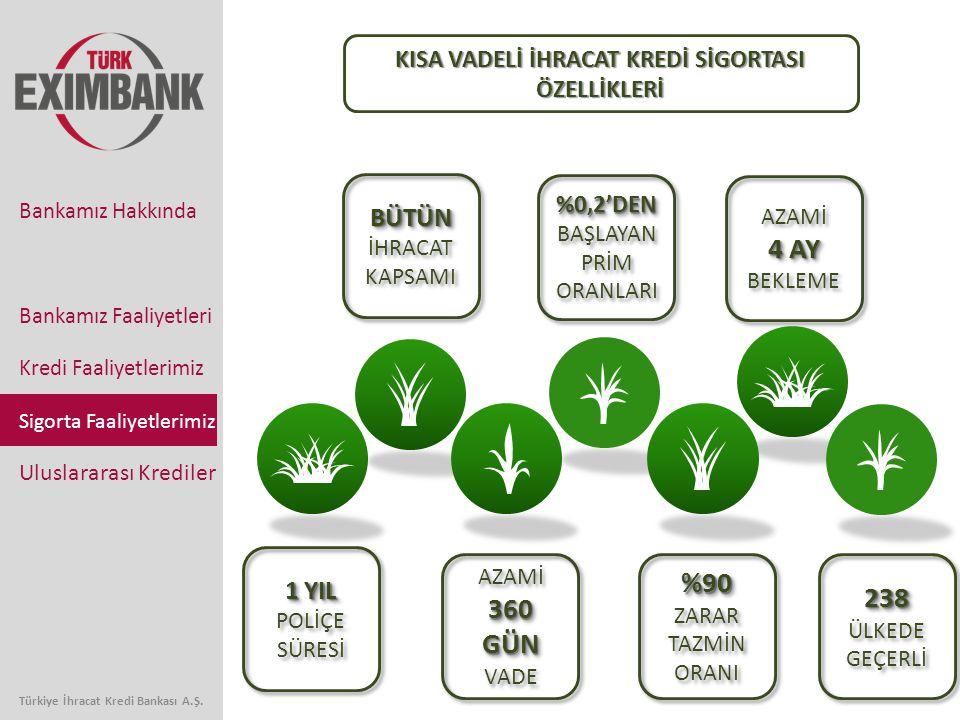 Bankamız Faaliyetleri Kredi Faaliyetlerimiz Sigorta Faaliyetlerimiz Uluslararası Krediler Bankamız Hakkında Türkiye İhracat Kredi Bankası A.Ş. 1 YIL 1
