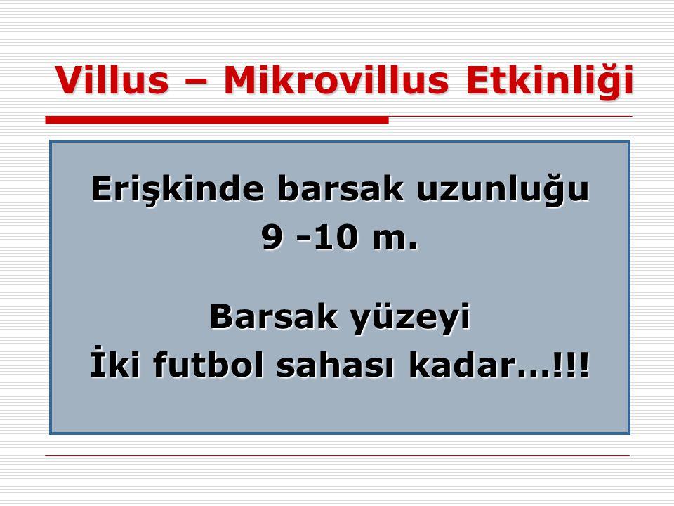 Villus – Mikrovillus Etkinliği Erişkinde barsak uzunluğu 9 -10 m. Barsak yüzeyi İki futbol sahası kadar…!!!