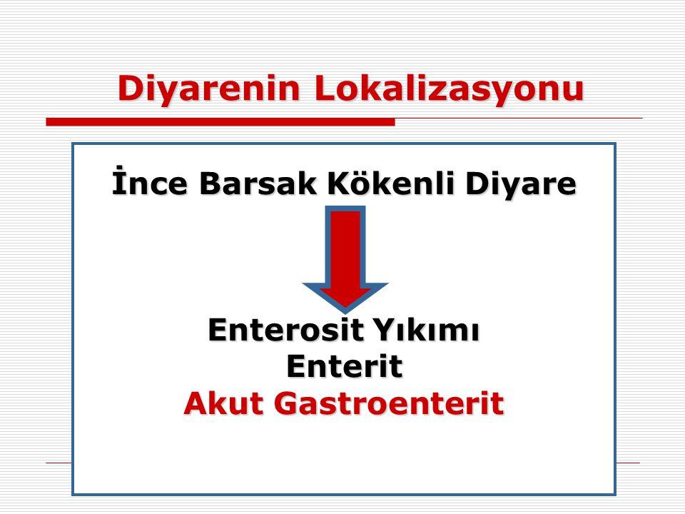Diyarenin Lokalizasyonu İnce Barsak Kökenli Diyare Enterosit Yıkımı Enterit Akut Gastroenterit