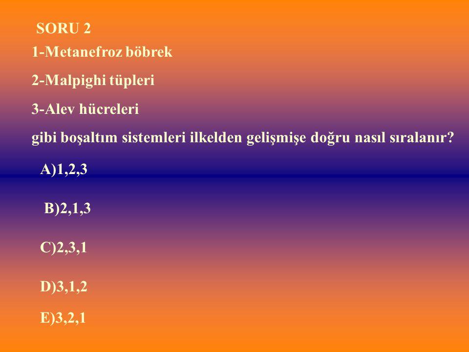 E)3,2,1 1-Metanefroz böbrek 2-Malpighi tüpleri 3-Alev hücreleri gibi boşaltım sistemleri ilkelden gelişmişe doğru nasıl sıralanır? SORU 2 A)1,2,3 B)2,