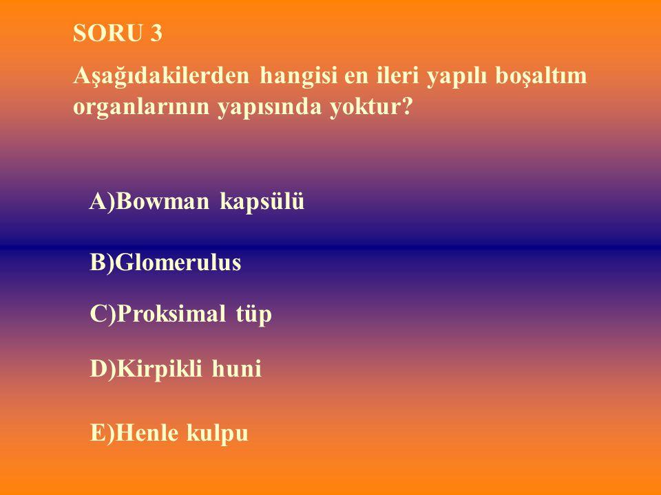 B)Glomerulus SORU 3 Aşağıdakilerden hangisi en ileri yapılı boşaltım organlarının yapısında yoktur? A)Bowman kapsülü E)Henle kulpu D)Kirpikli huni C)P