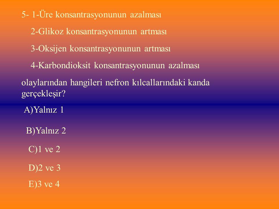 5- 1-Üre konsantrasyonunun azalması 2-Glikoz konsantrasyonunun artması 3-Oksijen konsantrasyonunun artması 4-Karbondioksit konsantrasyonunun azalması