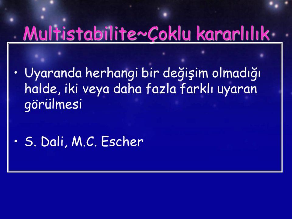 Multistabilite~Çoklu kararlılık Uyaranda herhangi bir değişim olmadığı halde, iki veya daha fazla farklı uyaran görülmesi S. Dali, M.C. Escher