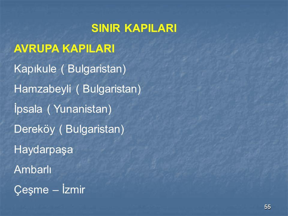 55 SINIR KAPILARI AVRUPA KAPILARI Kapıkule ( Bulgaristan) Hamzabeyli ( Bulgaristan) İpsala ( Yunanistan) Dereköy ( Bulgaristan) Haydarpaşa Ambarlı Çeş
