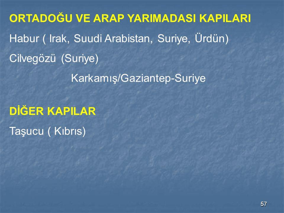 57 ORTADOĞU VE ARAP YARIMADASI KAPILARI Habur ( Irak, Suudi Arabistan, Suriye, Ürdün) Cilvegözü (Suriye) Karkamış/Gaziantep-Suriye DİĞER KAPILAR Taşuc