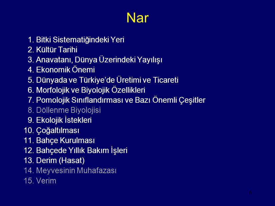 6 Nar 1. Bitki Sistematiğindeki Yeri 2. Kültür Tarihi 3. Anavatanı, Dünya Üzerindeki Yayılışı 4. Ekonomik Önemi 5. Dünyada ve Türkiye'de Üretimi ve Ti