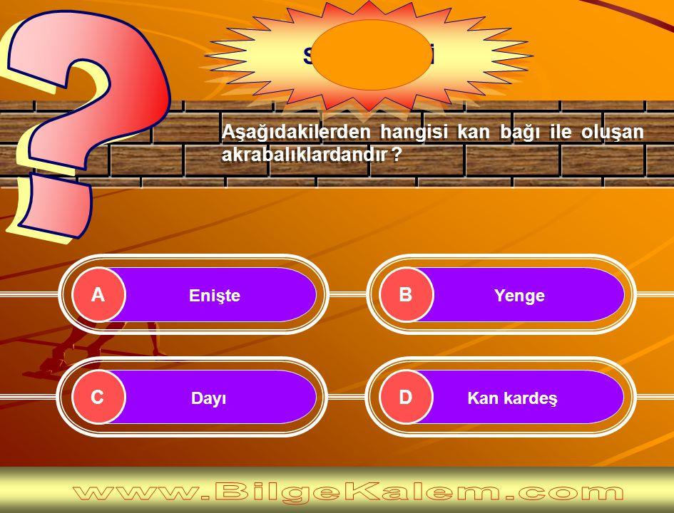 Yenge Dayı Enişte Kan kardeş AB CD Aşağıdakilerden hangisi kan bağı ile oluşan akrabalıklardandır .