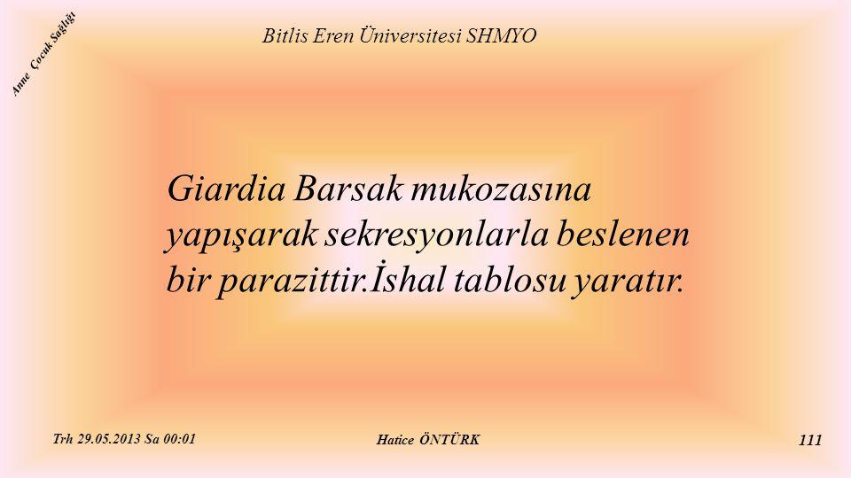 Giardia Barsak mukozasına yapışarak sekresyonlarla beslenen bir parazittir.İshal tablosu yaratır. Bitlis Eren Üniversitesi SHMYO Hatice ÖNTÜRK Trh 29.