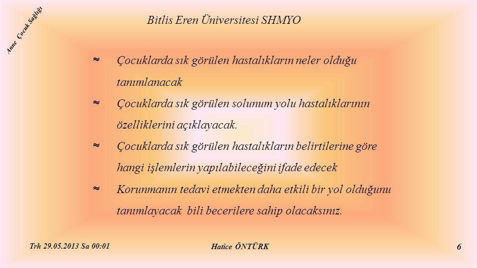 SOLUNUM YOLU HASTALIKLARI Bitlis Eren Üniversitesi SHMYO Hatice ÖNTÜRK Trh 29.05.2013 Sa 00:01 17 Anne Çocuk Sağlığı