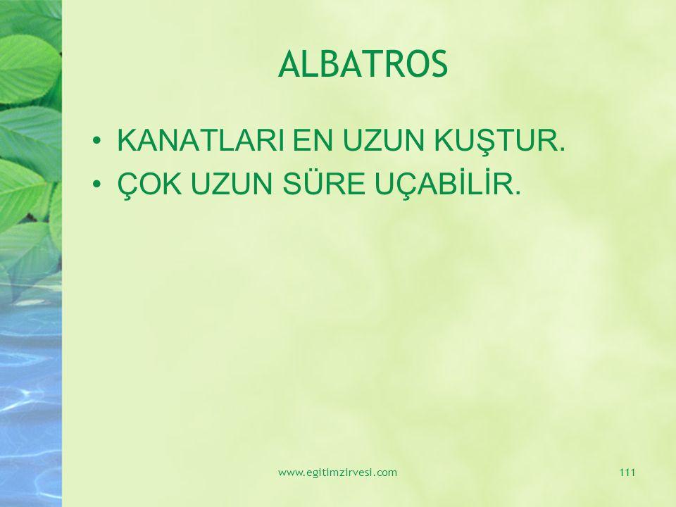 ALBATROS KANATLARI EN UZUN KUŞTUR. ÇOK UZUN SÜRE UÇABİLİR. www.egitimzirvesi.com111