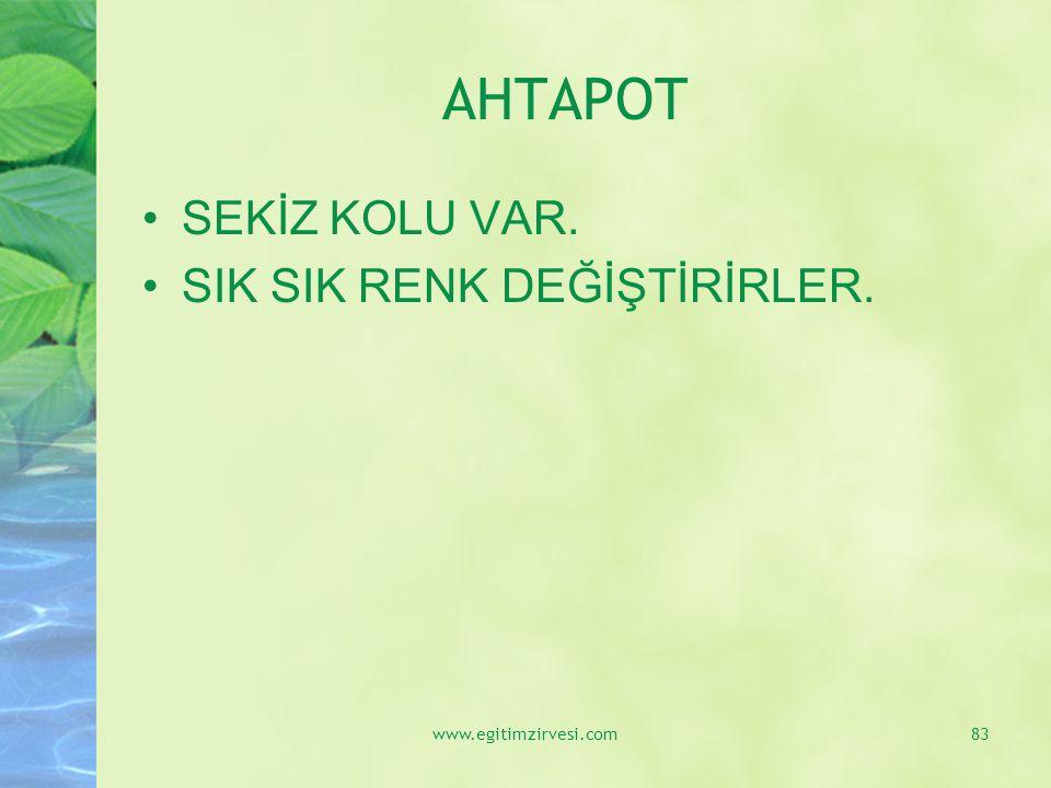 AHTAPOT SEKİZ KOLU VAR. SIK SIK RENK DEĞİŞTİRİRLER. www.egitimzirvesi.com83