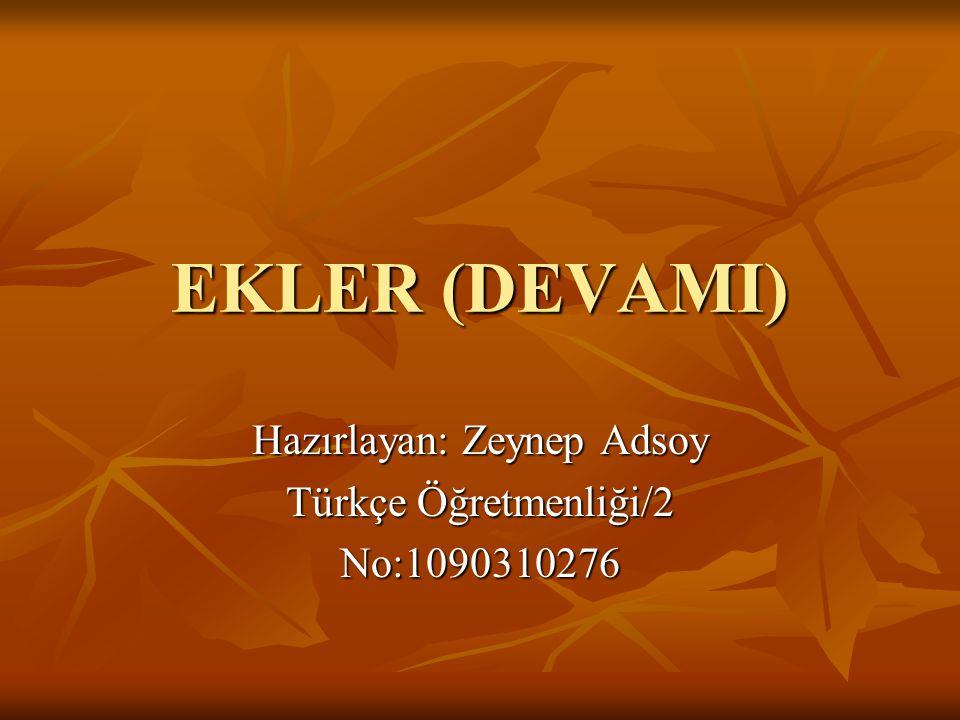 EKLER (DEVAMI) Hazırlayan: Zeynep Adsoy Türkçe Öğretmenliği/2 No:1090310276
