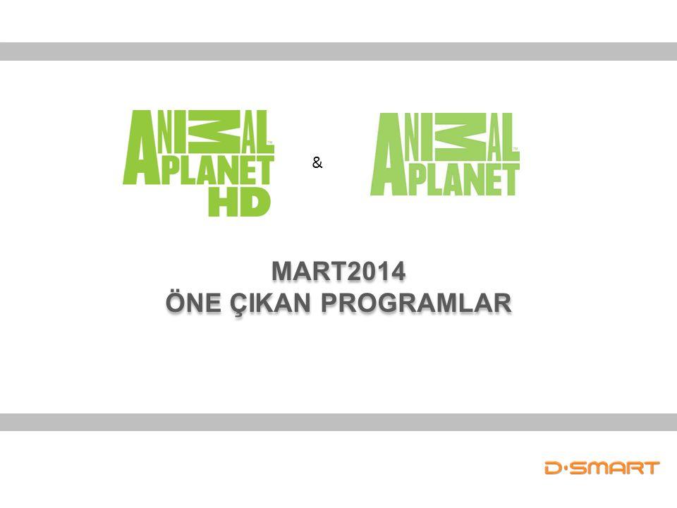 MART2014 ÖNE ÇIKAN PROGRAMLAR MART2014 ÖNE ÇIKAN PROGRAMLAR &