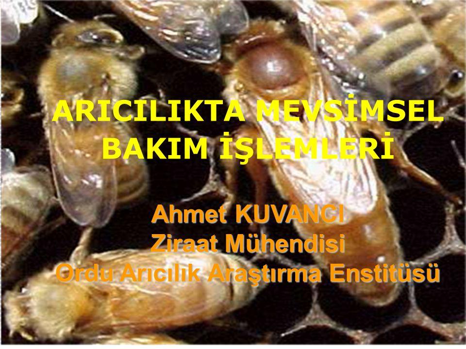 TEKNİK ARICILIK İÇİN; Doğal koşullar ve arılık yeri Yüksek verimli arı ırkları Arıcılık bilgi ve deneyimi Modern araç ve gereçler