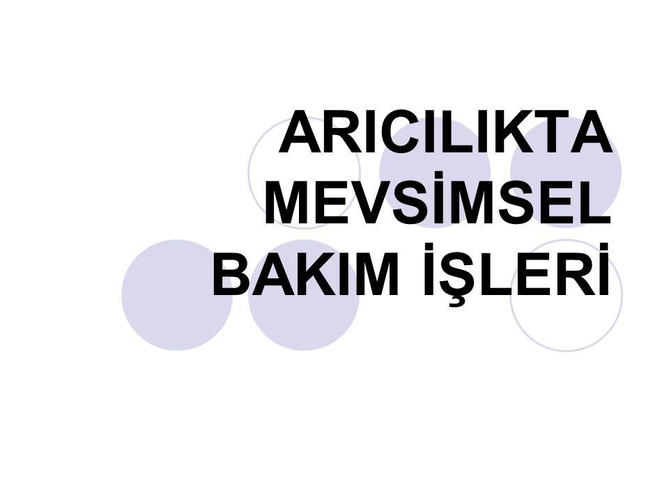 Ahmet Kuvancı TE Ş EKKÜRLER