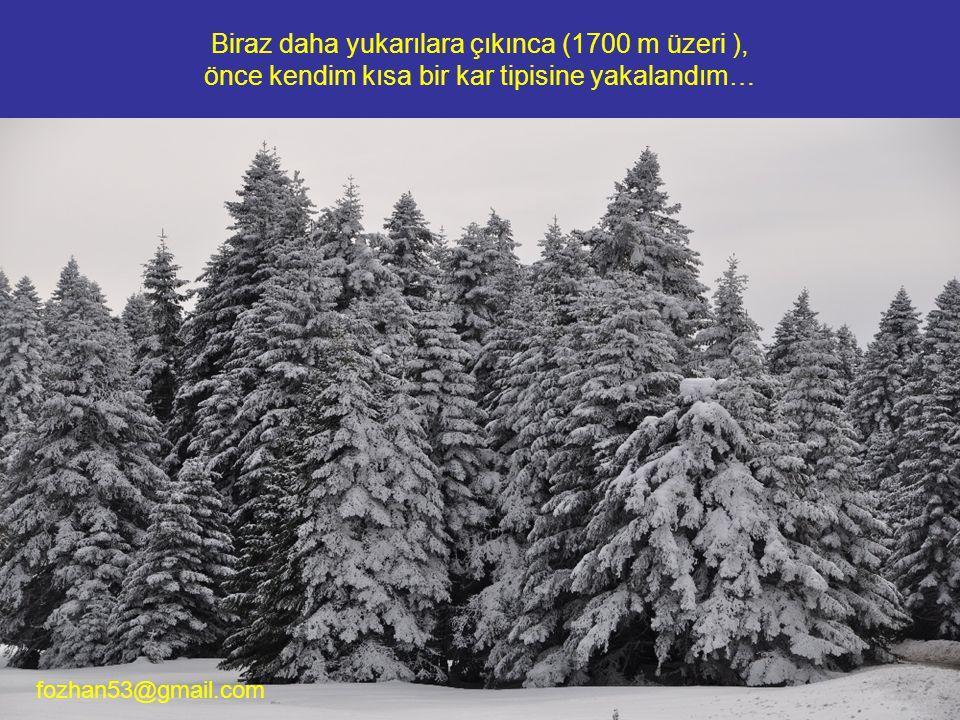 Biraz daha yukarılara çıkınca (1700 m üzeri ), önce kendim kısa bir kar tipisine yakalandım… fozhan53@gmail.com