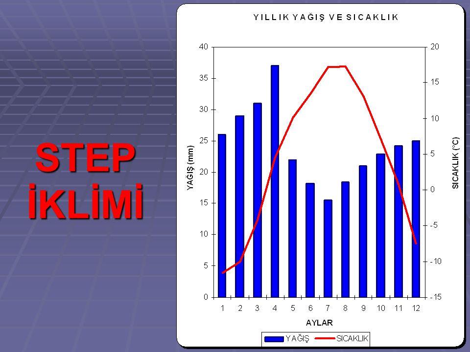 STEP İKLİMİ