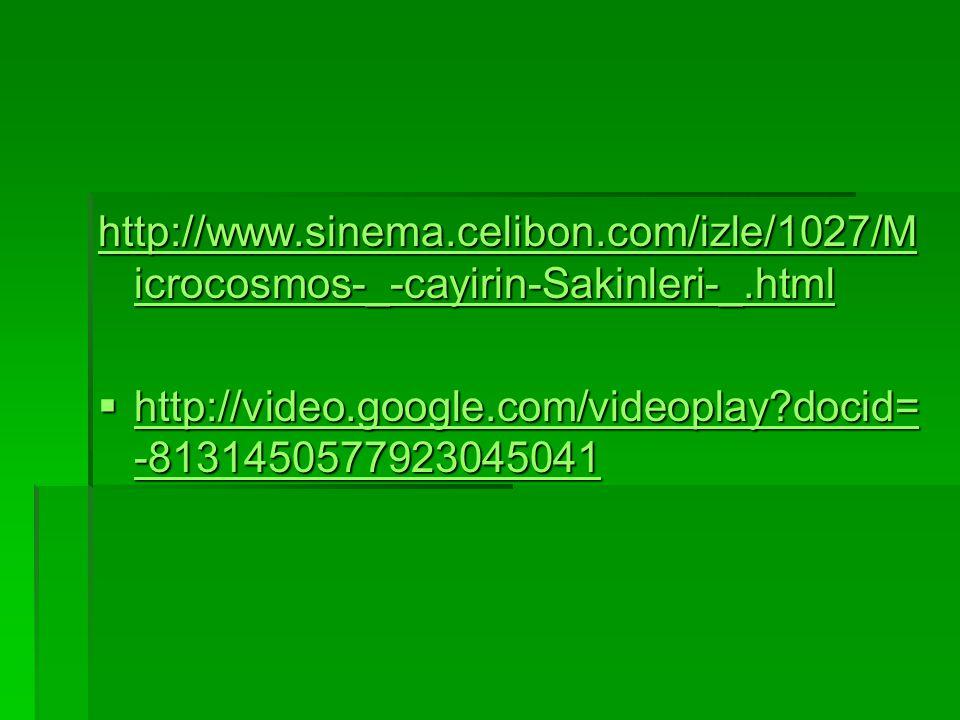 http://www.sinema.celibon.com/izle/1027/M icrocosmos-_-cayirin-Sakinleri-_.html http://www.sinema.celibon.com/izle/1027/M icrocosmos-_-cayirin-Sakinle