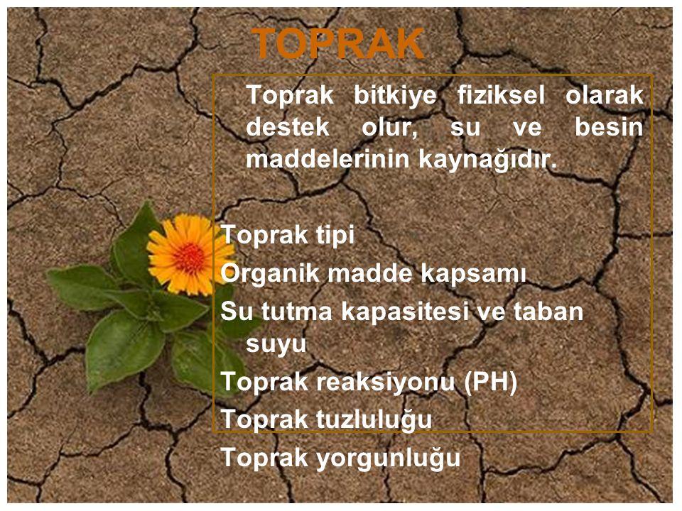 TOPRAK Toprak bitkiye fiziksel olarak destek olur, su ve besin maddelerinin kaynağıdır. Toprak tipi Organik madde kapsamı Su tutma kapasitesi ve taban
