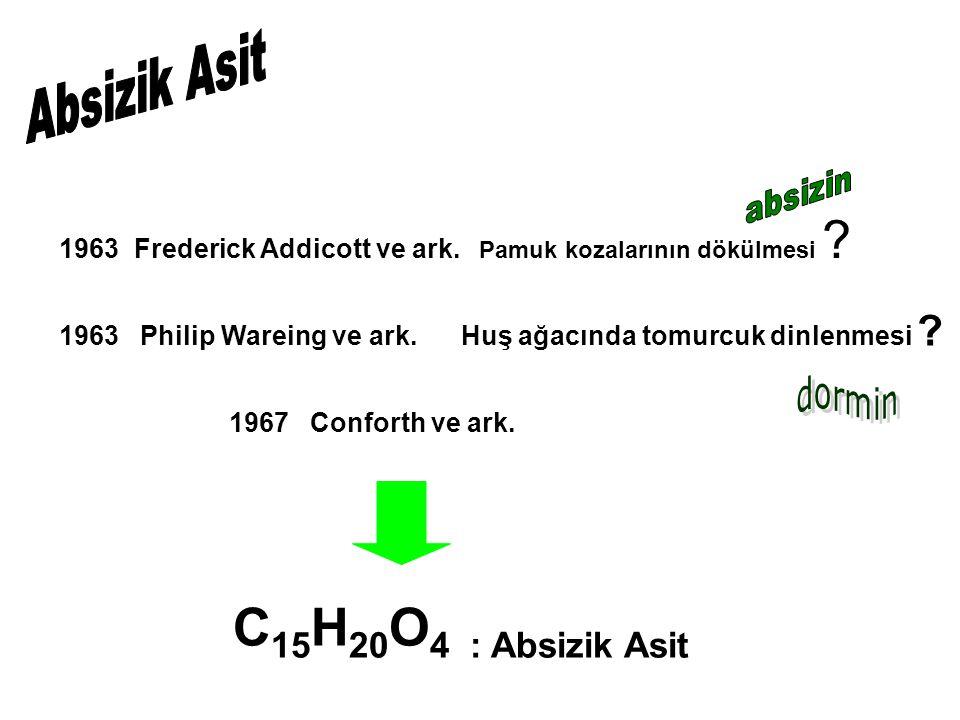 1963 Frederick Addicott ve ark. Pamuk kozalarının dökülmesi ? 1963 Philip Wareing ve ark. Huş ağacında tomurcuk dinlenmesi ? 1967 Conforth ve ark. C 1