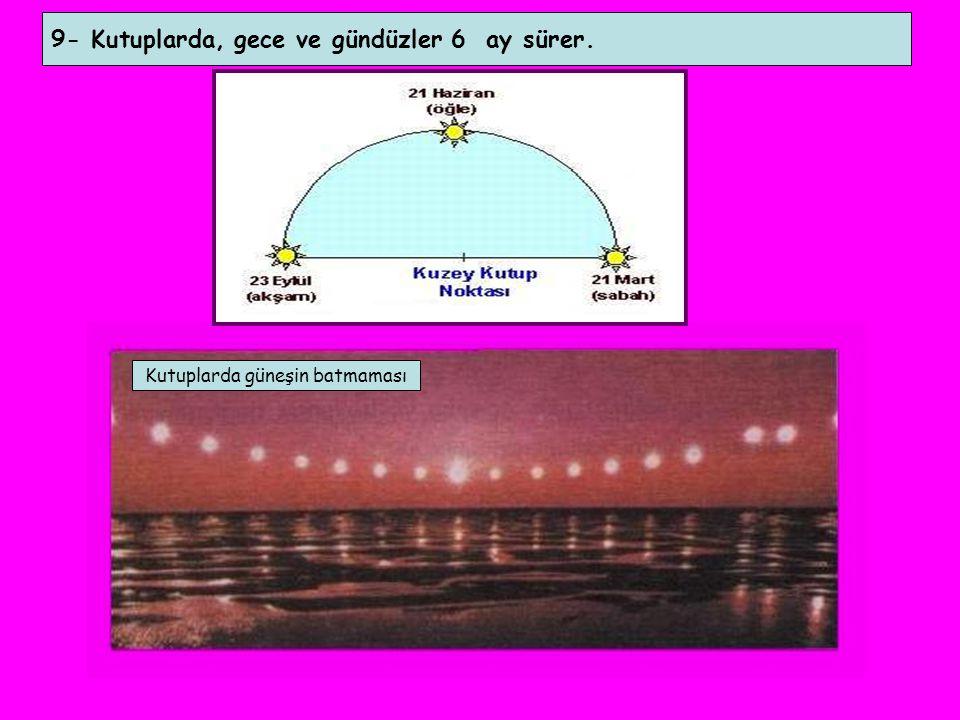 9- Kutuplarda, gece ve gündüzler 6 ay sürer. Kutuplarda güneşin batmaması