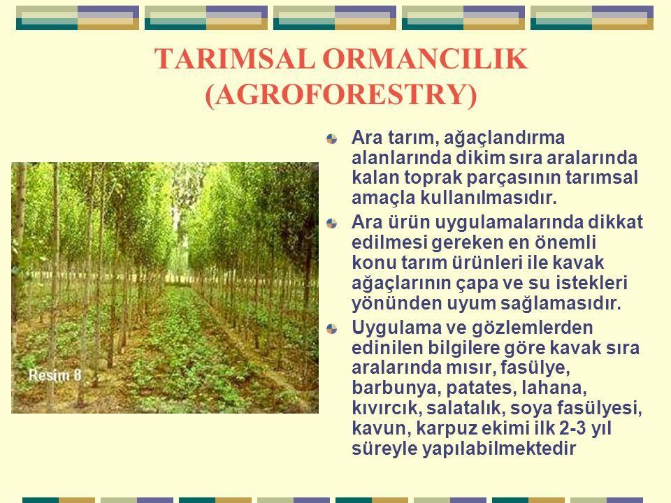 TARIMSAL ORMANCILIK (AGROFORESTRY) Ara tarım, ağaçlandırma alanlarında dikim sıra aralarında kalan toprak parçasının tarımsal amaçla kullanılmasıdır.