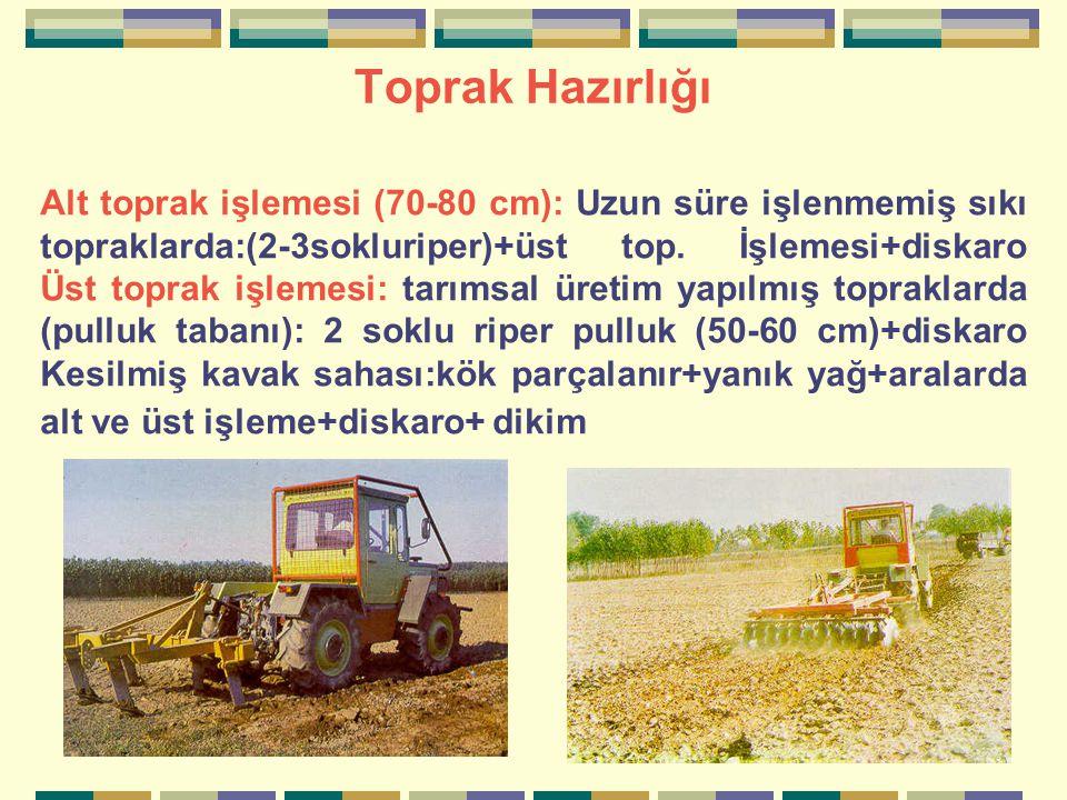 Toprak Hazırlığı Alt toprak işlemesi (70-80 cm): Uzun süre işlenmemiş sıkı topraklarda:(2-3sokluriper)+üst top.