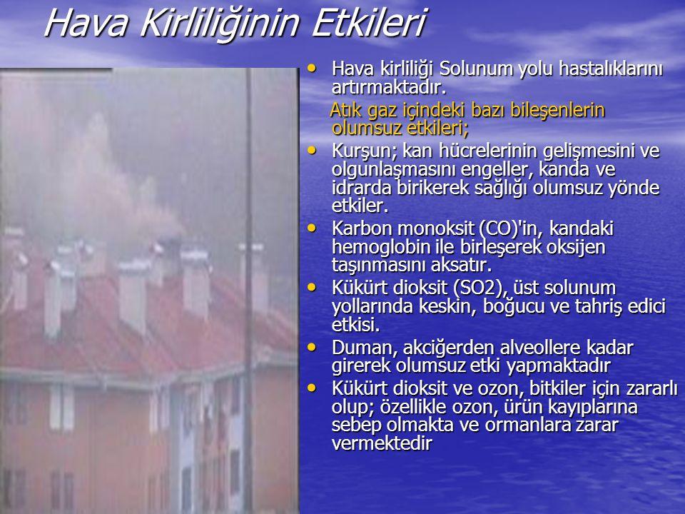 İstanbul ve Doğalgaz İstanbul da doğalgaz yaygınlaşmadan önce hava kirliliği çok tehlikeli sınırlara ulaşmış, insan ve çevre hayatını ciddi boyutlarda tehdit etmişti.