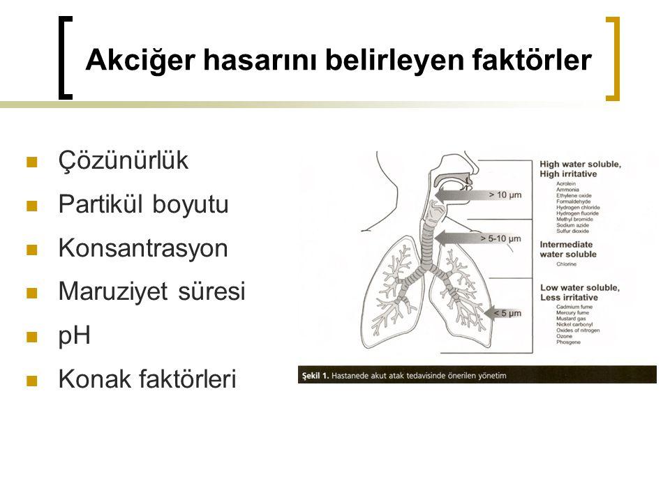 Akciğer hasarını belirleyen faktörler Çözünürlük Partikül boyutu Konsantrasyon Maruziyet süresi pH Konak faktörleri