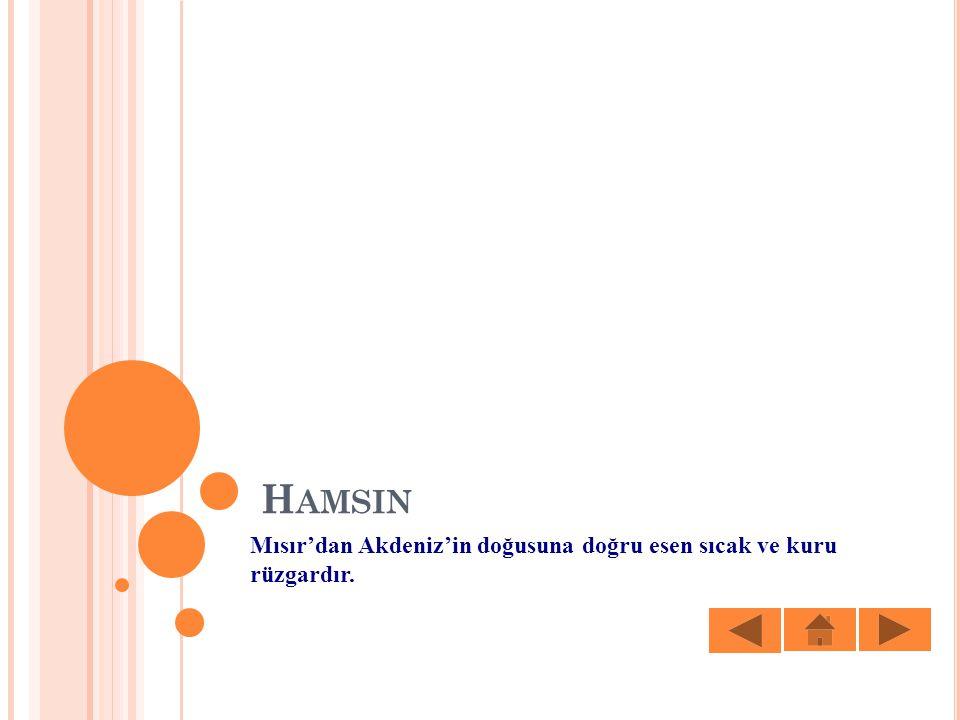 H AMSIN Mısır'dan Akdeniz'in doğusuna doğru esen sıcak ve kuru rüzgardır.
