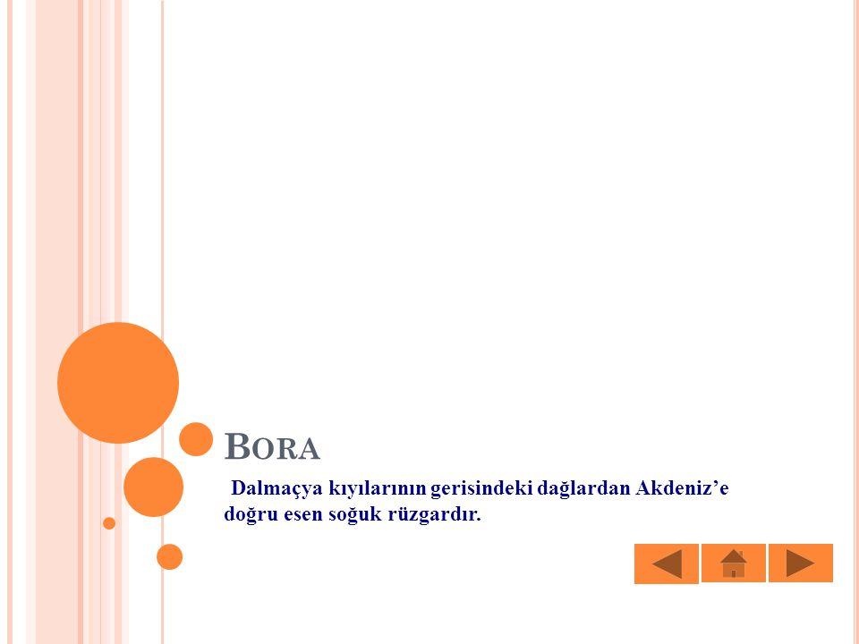 B ORA Dalmaçya kıyılarının gerisindeki dağlardan Akdeniz'e doğru esen soğuk rüzgardır.