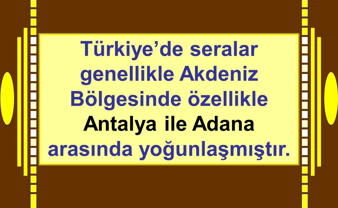 Türkiye'de seralar genellikle Akdeniz Bölgesinde özellikle Antalya ile Adana arasında yoğunlaşmıştır.