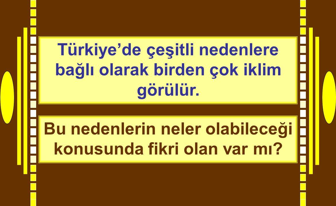 Türkiye'de çeşitli nedenlere bağlı olarak birden çok iklim görülür. Bu nedenlerin neler olabileceği konusunda fikri olan var mı?
