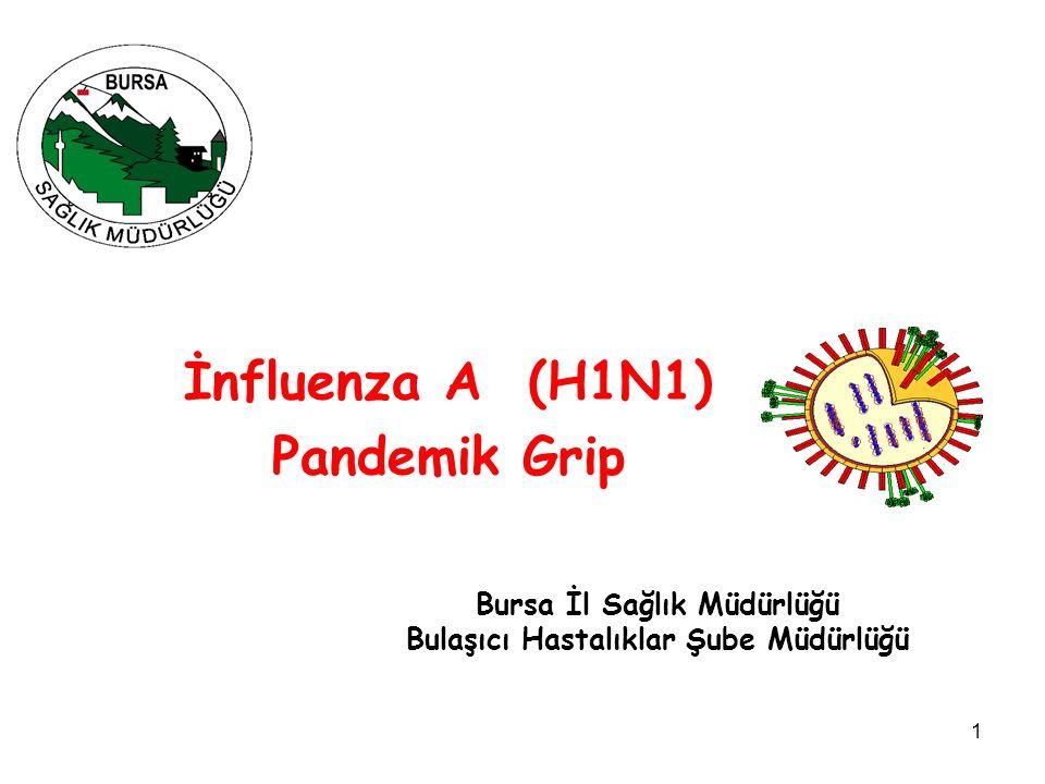 1 İnfluenza A (H1N1) Pandemik Grip Bursa İl Sağlık Müdürlüğü Bulaşıcı Hastalıklar Şube Müdürlüğü