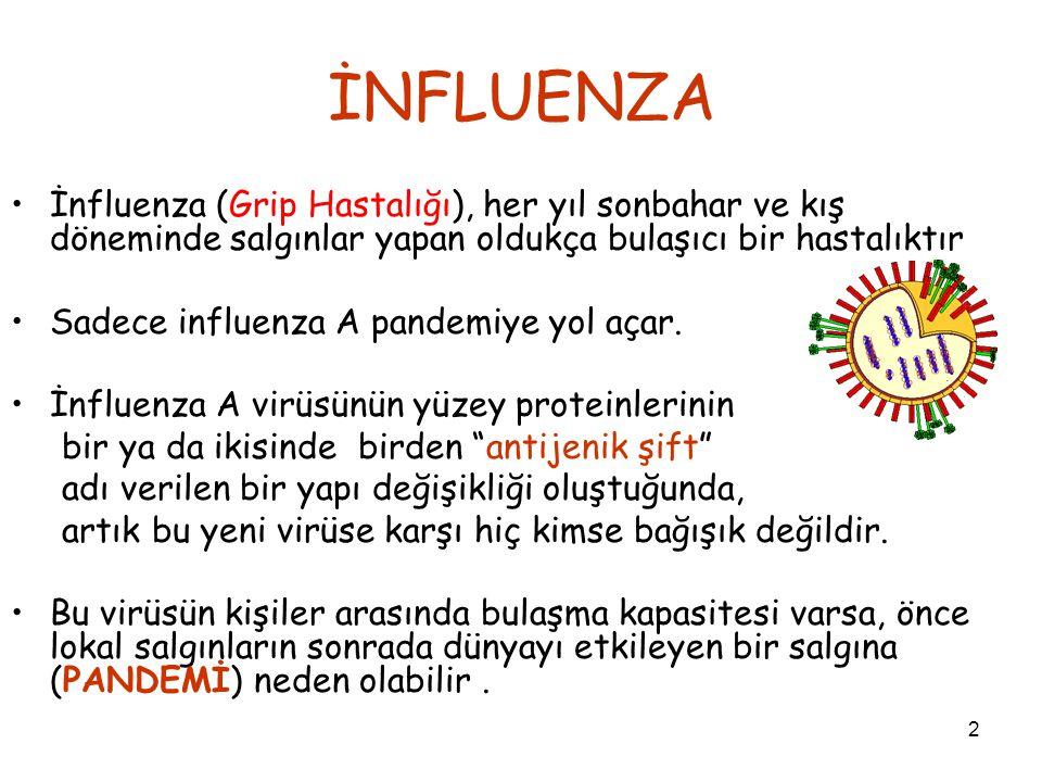 2 İNFLUENZA İnfluenza (Grip Hastalığı), her yıl sonbahar ve kış döneminde salgınlar yapan oldukça bulaşıcı bir hastalıktır Sadece influenza A pandemiye yol açar.