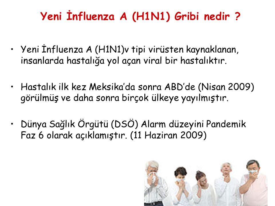 5 Yeni İnfluenza A (H1N1) Gribi nedir .