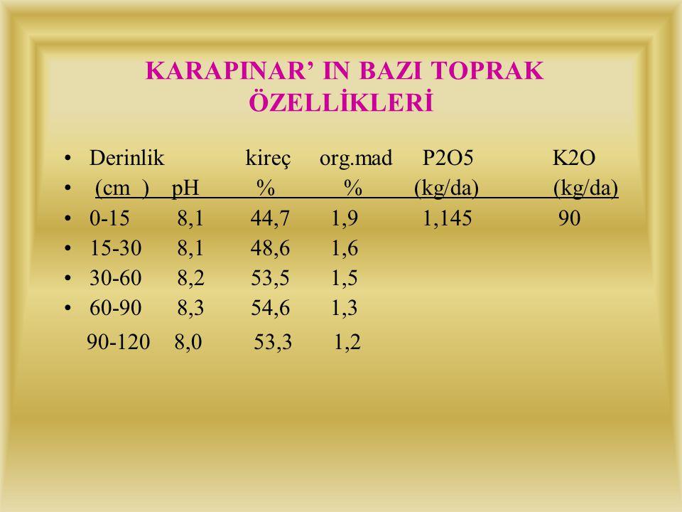 KARAPINAR' IN BAZI TOPRAK ÖZELLİKLERİ Derinlik % kum % silt % kil bünye 0-15 68,115,1 16,6 SL 15-30 57,222,7 20,1 SCL 30-60 31,028,0 43,0 C 60-90 16,0