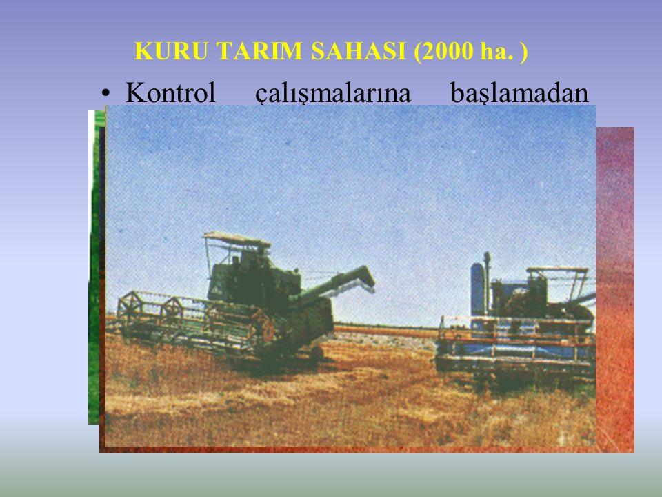 KURU TARIM SAHASI ( 3200 ha) –Kuru Tarım Sahası 2000 ha. Şeritvari Ekim 1000 ha. Çiftçi Arazisi 200 ha. Sulu Tarım Alanı (Bağ- Bahçe ve Fidan Üretim S