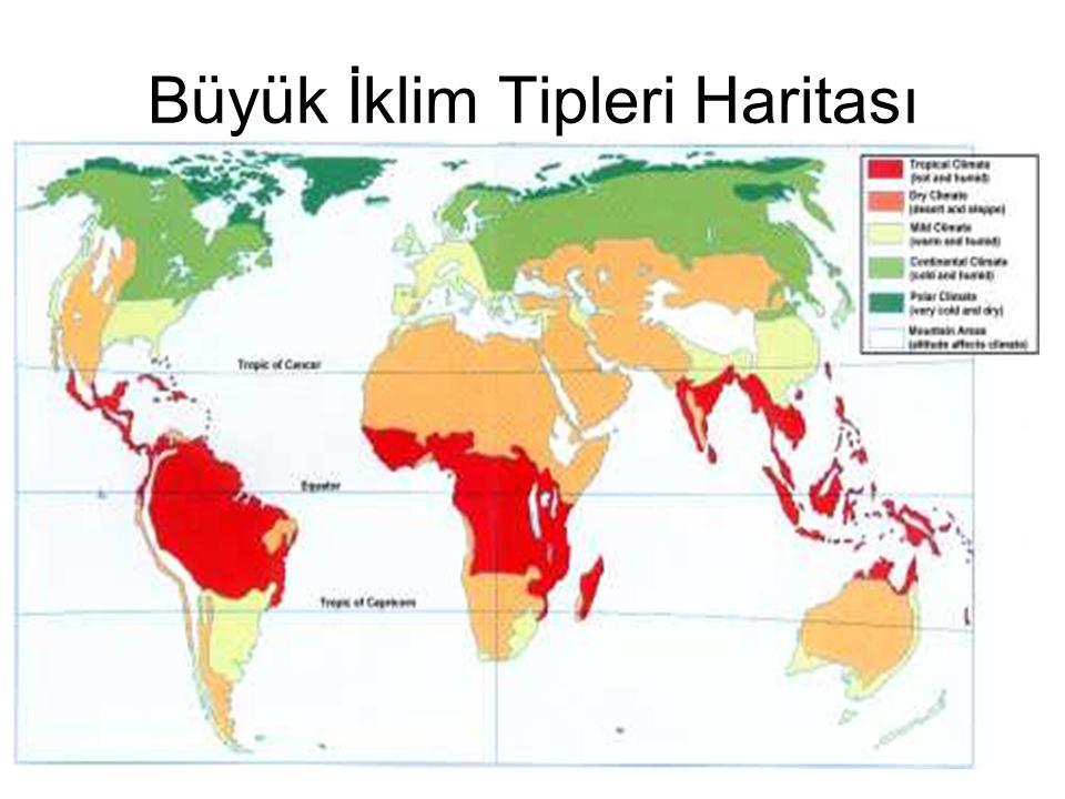 Büyük İklim Tipleri Haritası