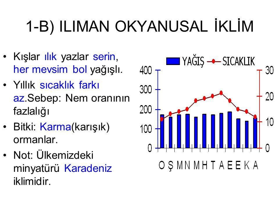 1-B) ILIMAN OKYANUSAL İKLİM Kışlar ılık yazlar serin, her mevsim bol yağışlı. Yıllık sıcaklık farkı az.Sebep: Nem oranının fazlalığı Bitki: Karma(karı