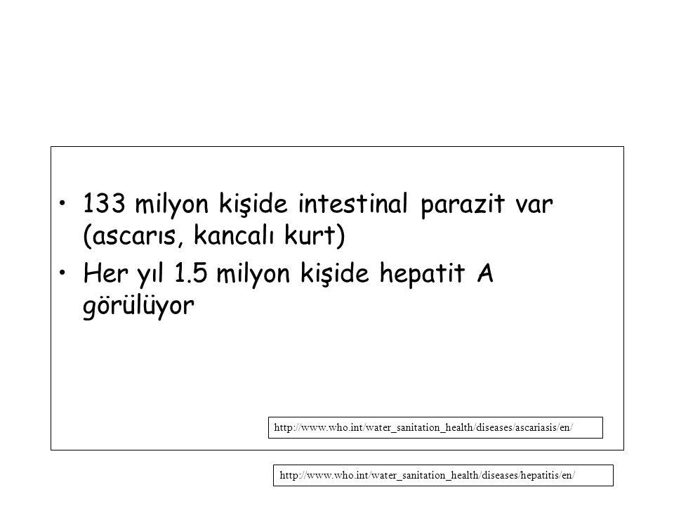 133 milyon kişide intestinal parazit var (ascarıs, kancalı kurt) Her yıl 1.5 milyon kişide hepatit A görülüyor http://www.who.int/water_sanitation_health/diseases/hepatitis/en/ http://www.who.int/water_sanitation_health/diseases/ascariasis/en/