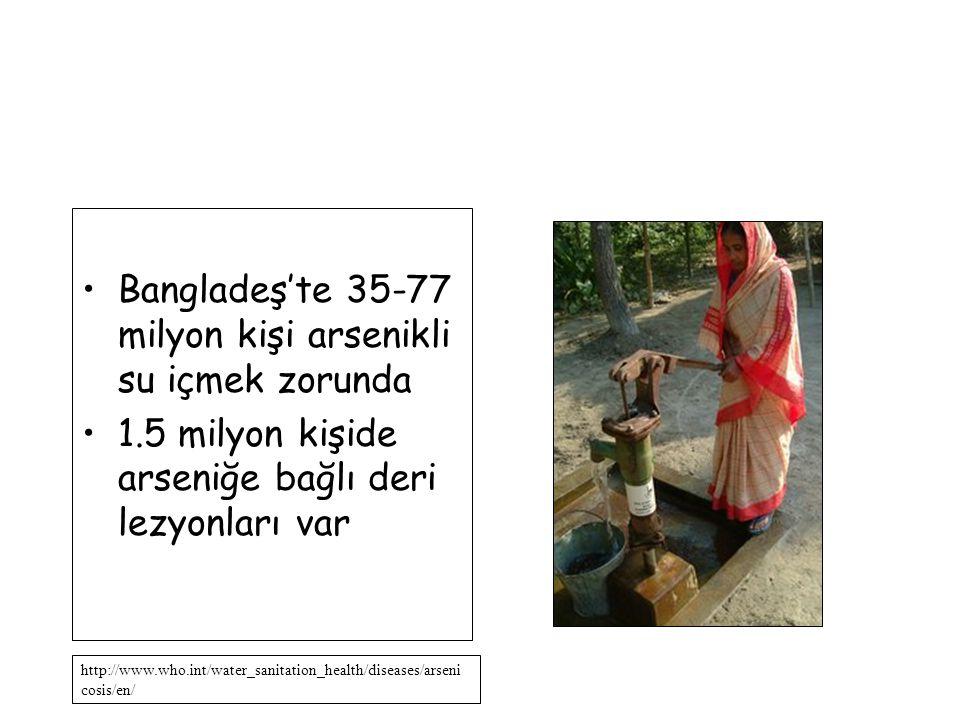 Bangladeş'te 35-77 milyon kişi arsenikli su içmek zorunda 1.5 milyon kişide arseniğe bağlı deri lezyonları var http://www.who.int/water_sanitation_hea